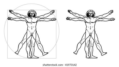 Leonardo's Vitruvian Man (vector)