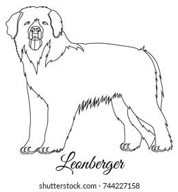 Leonberger dog outline vector illustration