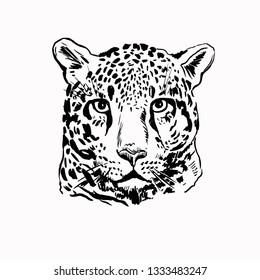 Leopard head black and white illustration