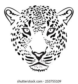 Leopard Head. illustration vector