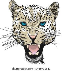 Leopard head silhouette, vector design.
