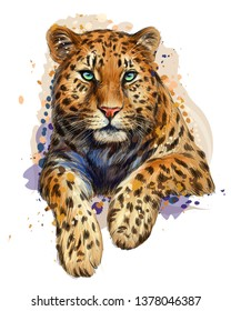 Leopard / Jaguar. Color, graphic, artistic portrait of a leopard in a picturesque style on a white background with splashes of watercolor.
