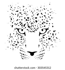leopard panther face abstract zoo animal