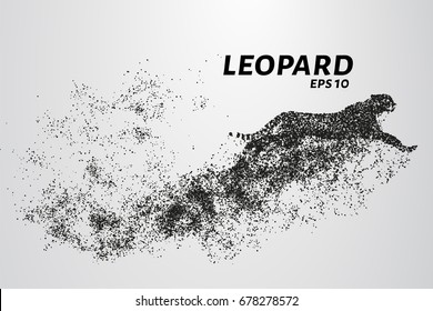 Leopard of particles. The leopard consists of circles and points. Vector illustration