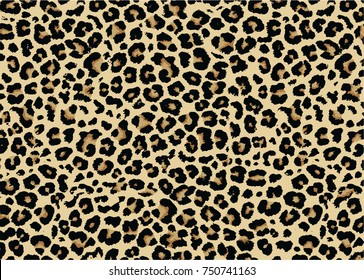 Leopard pattern design, vector illustration background