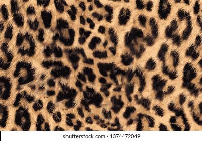 Leopard Patttern Print