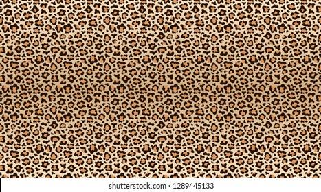 Leopard print pattern. Seamless pattern of leopard skin. Fashionable cheetah fur texture. Vector