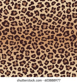 Leopard seamless pattern, imitation of leopard skin. Vector