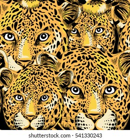 Leopard seamless pattern. Vector illustration on black background