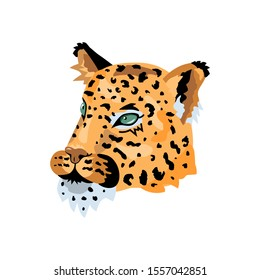 Leopard, wild cat face for pattern, design, t-shirt print, sticker. Vector illustration on white background.