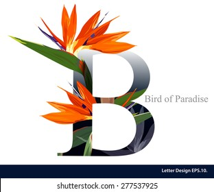Letter B vector alphabet with bird of paradise flower. ABC concept type as logo. Typography design