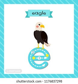 Letter E lowercase cute children colorful zoo and animals ABC alphabet tracing flashcard of Standing Eagle for kids learning English vocabulary and handwriting vector illustration.