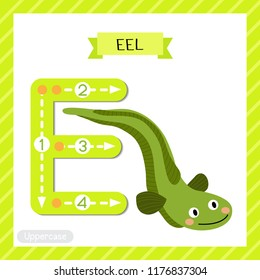 Letter E uppercase cute children colorful zoo and animals ABC alphabet tracing flashcard of Green Eel for kids learning English vocabulary and handwriting vector illustration.