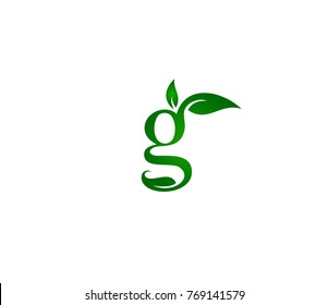 Letter G logo template. trendy g with leaves