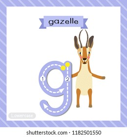 Letter G lowercase cute children colorful zoo and animals ABC alphabet tracing flashcard of Gazelle standing on two legs for kids learning English vocabulary and handwriting vector illustration.