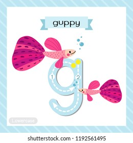 Letter G lowercase cute children colorful zoo and animals ABC alphabet tracing flashcard of Pink Guppy fish for kids learning English vocabulary and handwriting vector illustration.