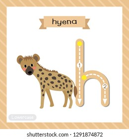 Letter H lowercase cute children colorful zoo and animals ABC alphabet tracing flashcard of Hyena for kids learning English vocabulary and handwriting vector illustration.