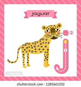 Letter J lowercase cute children colorful zoo and animals ABC alphabet tracing flashcard of standing Jaguar for kids learning English vocabulary and handwriting vector illustration.