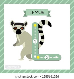 Letter L uppercase cute children colorful zoo and animals ABC alphabet tracing flashcard of Standing Lemur for kids learning English vocabulary and handwriting vector illustration.