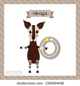 Letter O lowercase cute children colorful zoo and animals ABC alphabet tracing flashcard of Okapi standing on two legs for kids learning English vocabulary and handwriting vector illustration.