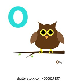 Letter O Owl Zoo alphabet. English abc with animals Education cards for kids Isolated White background Flat design Vector illustration