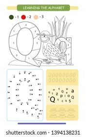 photograph regarding Letter Q Printable identified as Q for Quail Visuals, Inventory Shots Vectors Shutterstock