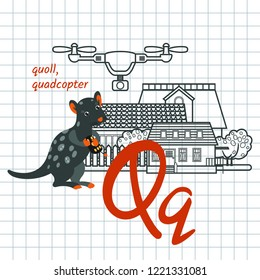 Letter Qq is for children alphabet. Vector illustration with cartoon quoll and line quadcopter, houses. School poster