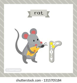 Letter R lowercase cute children colorful zoo and animals ABC alphabet tracing flashcard of Rat holding cheese for kids learning English vocabulary and handwriting vector illustration.
