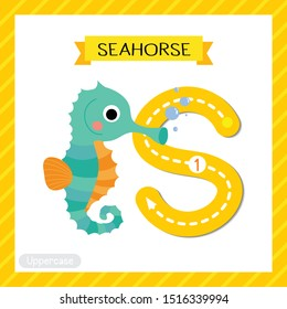 Letter S uppercase cute children colorful zoo and animals ABC alphabet tracing flashcard of Cute Seahorse for kids learning English vocabulary and handwriting vector illustration.