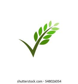 letter v with leaf logo vector