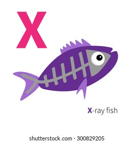 Letter X X-ray fish Zoo alphabet. English abc with animals Education cards for kids Isolated White background Flat design Vector illustration