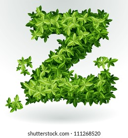 Letter Z, green leaves summer vector alphabet.