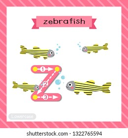 Letter Z lowercase cute children colorful zoo and animals ABC alphabet tracing flashcard of Zebrafish for kids learning English vocabulary and handwriting vector illustration.