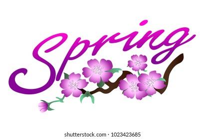 Lettering spring, sakura flowers.