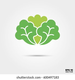 Lettuce vegetable two color vector icon