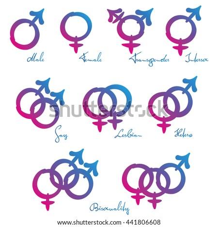 homo stright suku puoli