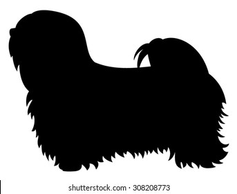 Lhasa Apso purebred dog standing in side view - vector silhouette isolated