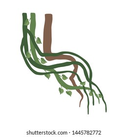 Liana Winding Branches with Leaves, Jungle Plant Decorative Element, Rainforest Flora Vector Illustration
