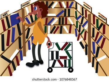 a librarian arranges books on the shelves,