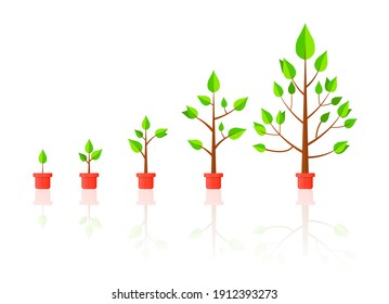 Life Cycle Timeline and growth metaphor, tree growth stages from seed to large plant. Colorful cartoon style flat vector illustration.