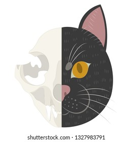 The life and death of Schrodinger's cat vector illustration. Schrodinger's famous thought experiment. Half alive half dead cat. Half skull half face of cat isolated on white background.