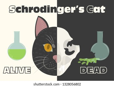 The life and death of Schrodinger's cat vector illustration. Schrodinger's famous thought experiment. Half alive half dead cat. Half skull half face of cat.