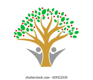 life tree herbal leaves leaf plant floral image vector icon