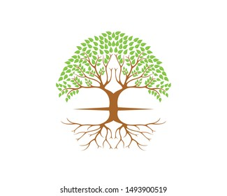 Life tree with roots and branch