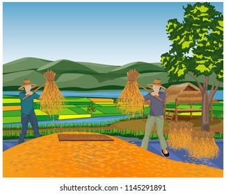 lifestyle countryside,farmer cartoon shape with rice vector design