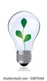 Light bulb whit plant / vector