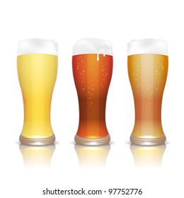 Light, dark and unfiltered beer in glasses with reflection, isolated on white, vector illustration, eps10