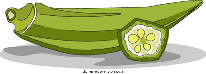 A light green okra with another piece sliced in front of it showing it's seeds, vector, color drawing or illustration.