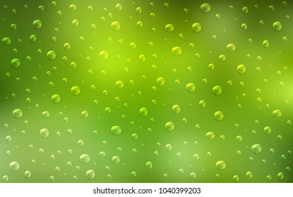 Light Green, Yellow vector background with bubbles. Blurred bubbles on abstract background with colorful gradient. Completely new template for your brand book.