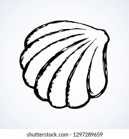 Light nacre scallop snail isolated on white backdrop. Freehand outline blue ink hand drawn picture sketchy in art scribble retro style pen on paper. Close up view with space for text